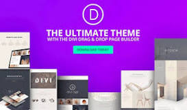 The Best and Most Popular WordPress Themes of 2020