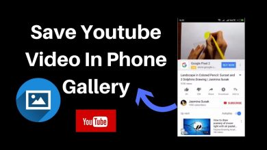 2. How to Download and Watch YouTube Videos Offline?