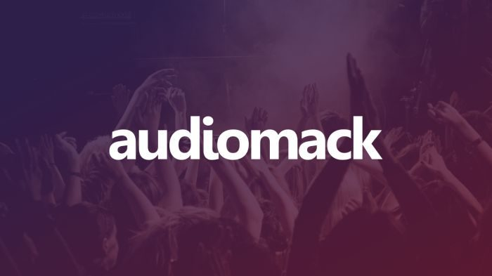 How To Download Audiomack Music To Your Phone For Free